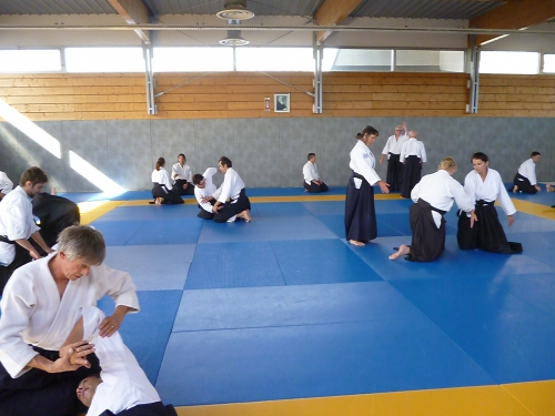 aikido,commentry,ffaaa,préparation grades,alain royer,thomas gavory