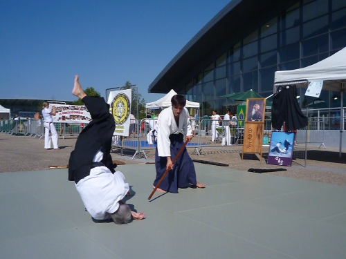aikido,commentry,desertines